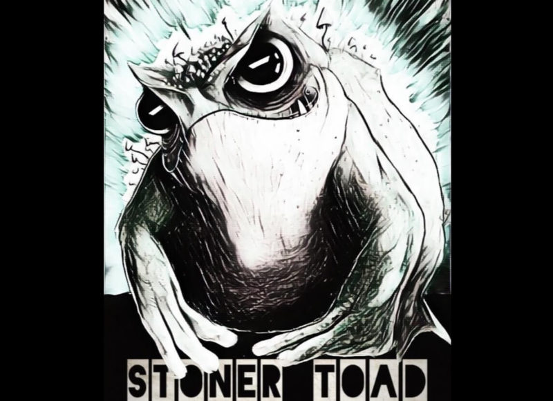 Stoner Toad